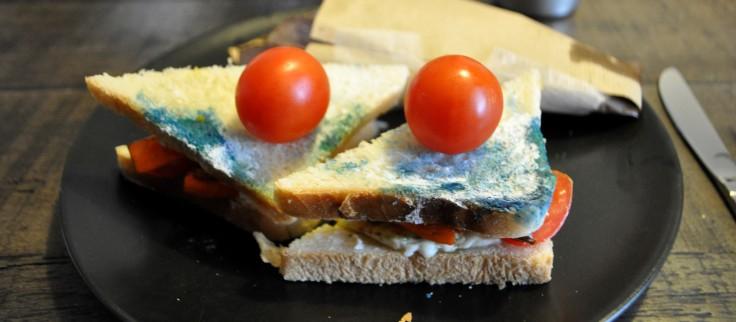 Schimmel Sandwich