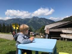 Blick vom Spielplatz auf die Karsegg Alm
