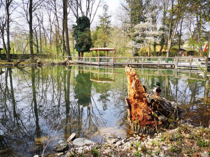Tiergarten Wels (2)