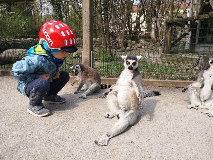 Tiergarten Wels (5)