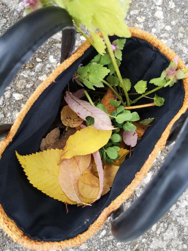Herbstliche DIYs (1)